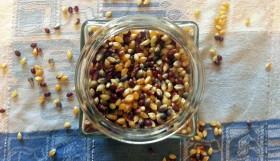 Garlic Zaatar Popcorn