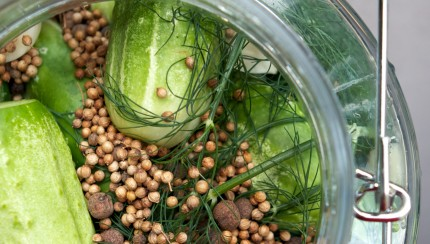 Real Food Fermented Kitchen - Pickled Cucumbers