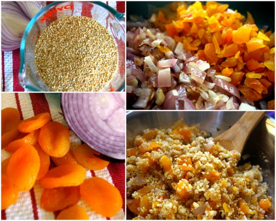 Diced Apricots and Onions