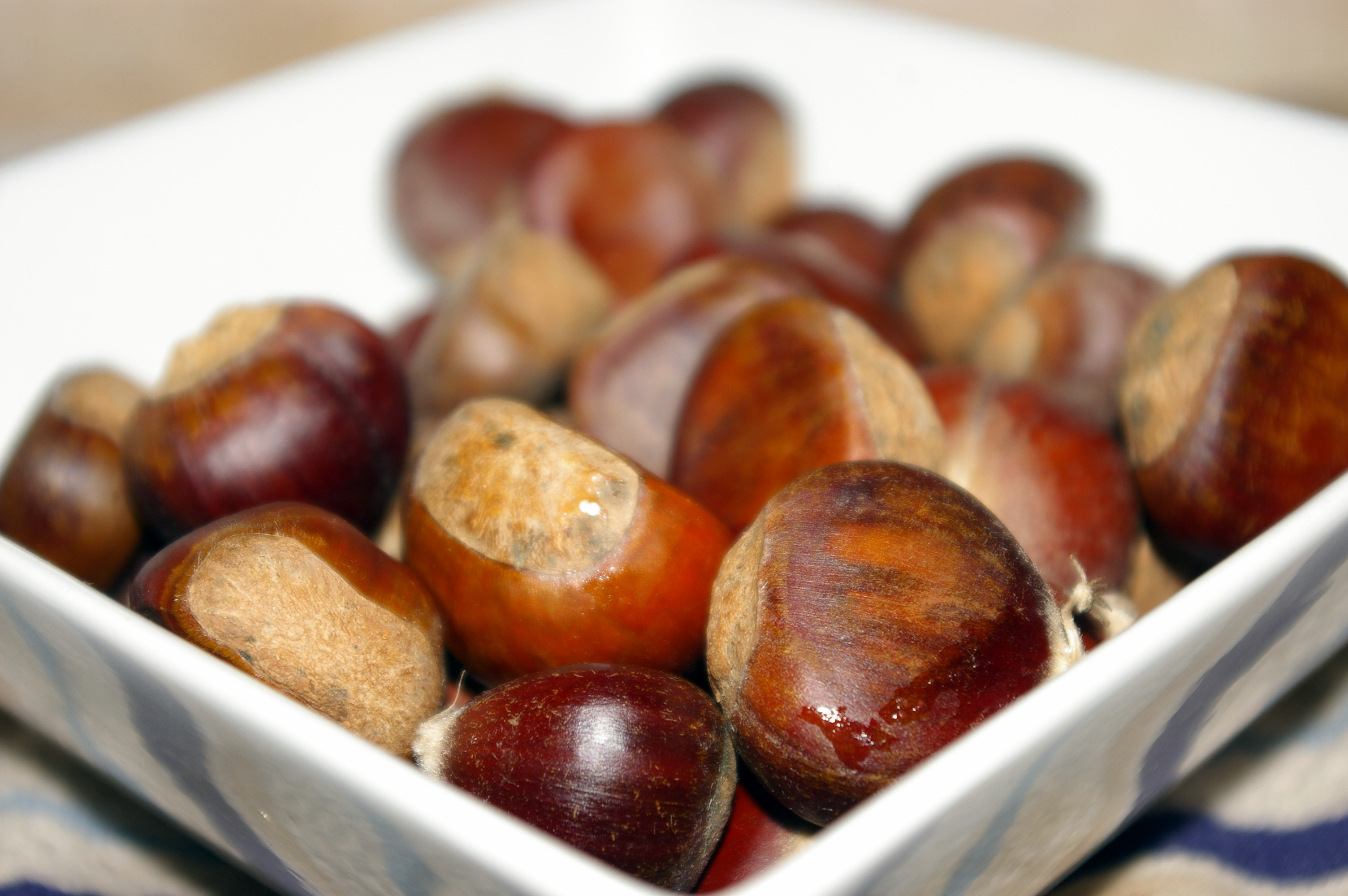 Roasted Chestnuts Recipes — Dishmaps